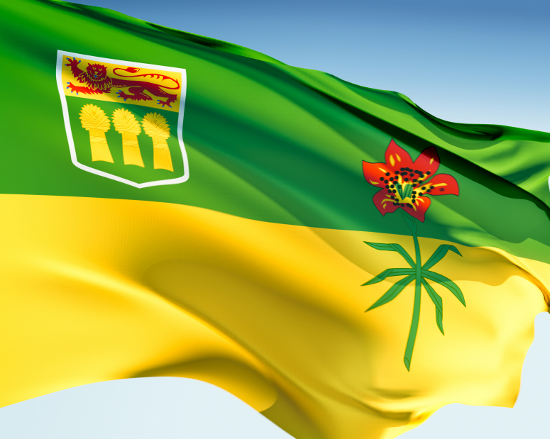 how to become an immigration consultant in saskatchewan